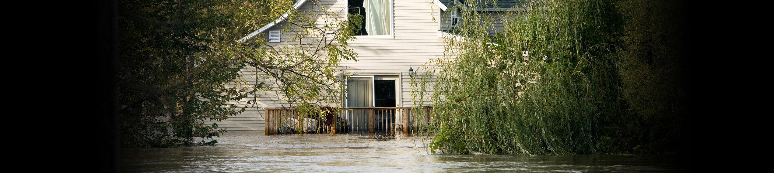 Water & Flood Damage Removal Services in Paul Davis Restoration & Remodeling of Elizabethtown